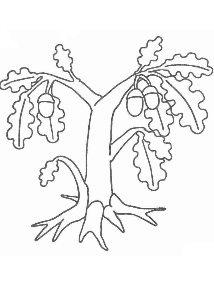 fruit tree coloring page fruit of the spirit filling the blank coloring sheet tree coloring fruit page