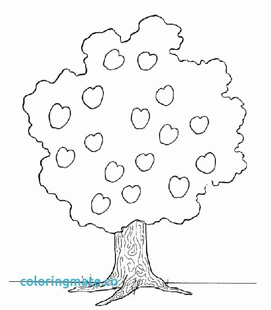 fruit tree coloring page pear tree coloring pages download and print for free fruit coloring page tree