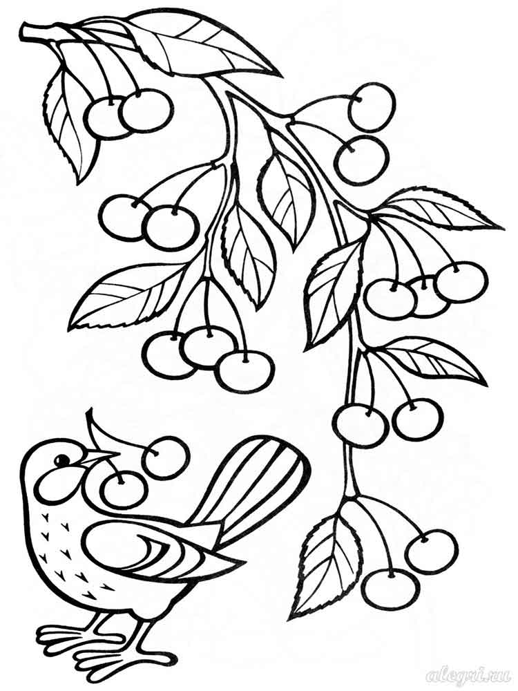 fruit tree coloring page trees coloring pages download and print trees coloring pages page fruit tree coloring