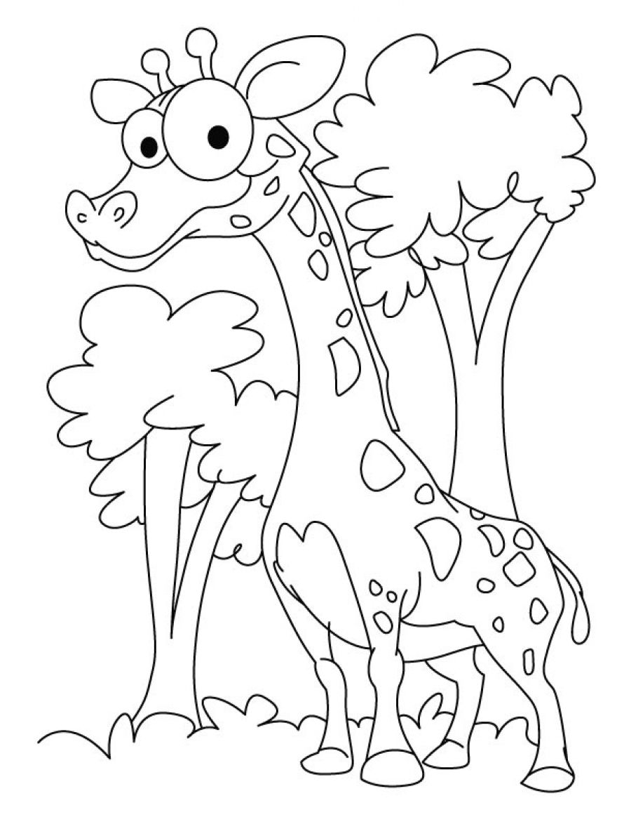 funny coloring pages to print get this printables for toddlers funny coloring pages funny print to coloring pages