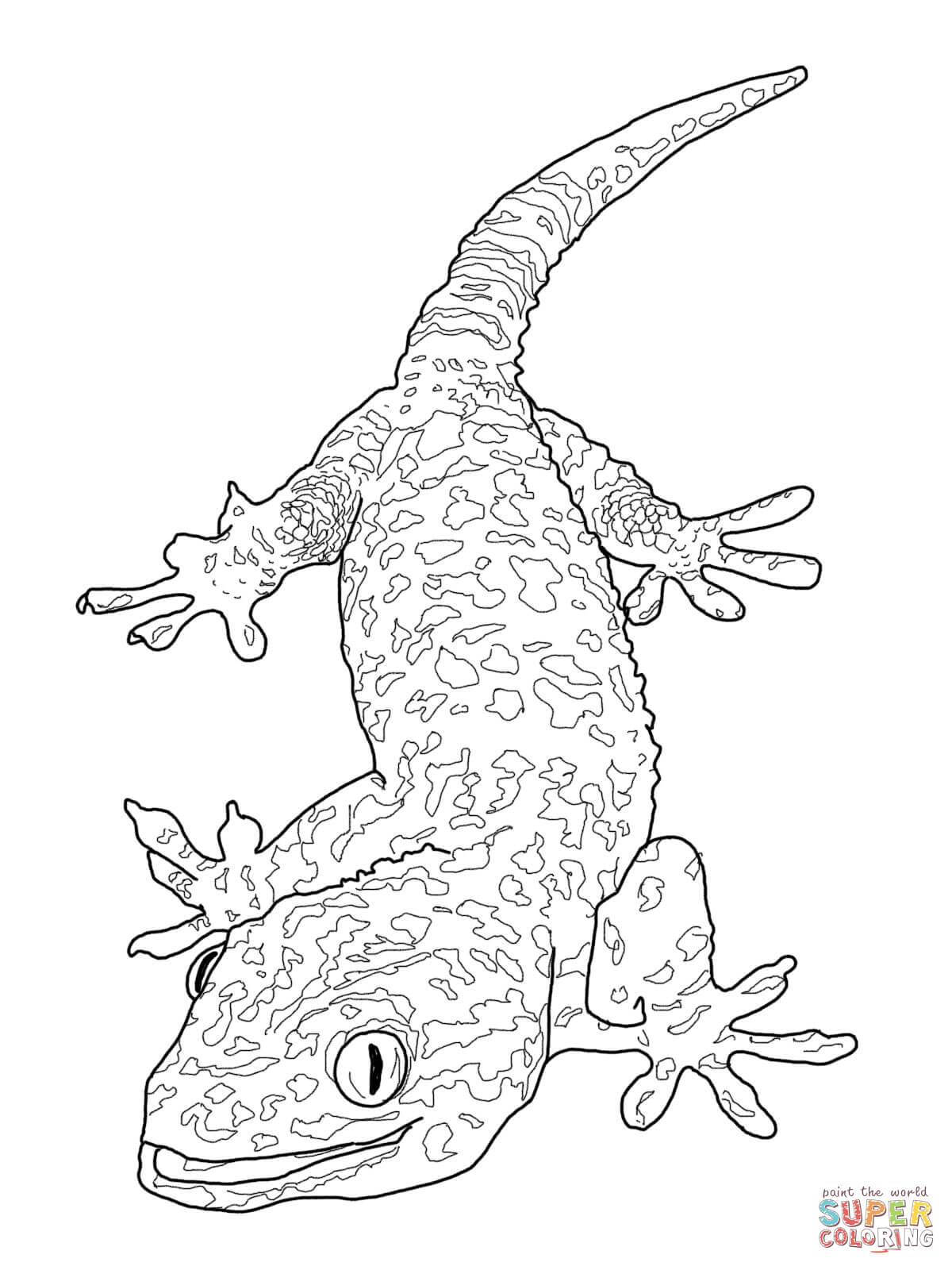 gecko lizard coloring pages cartoon gecko coloring pages download and print for free pages lizard coloring gecko