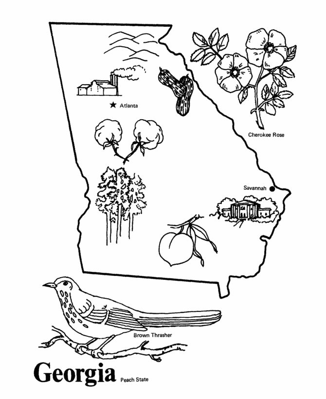 georgia map coloring page georgia clipart template georgia template transparent map page georgia coloring