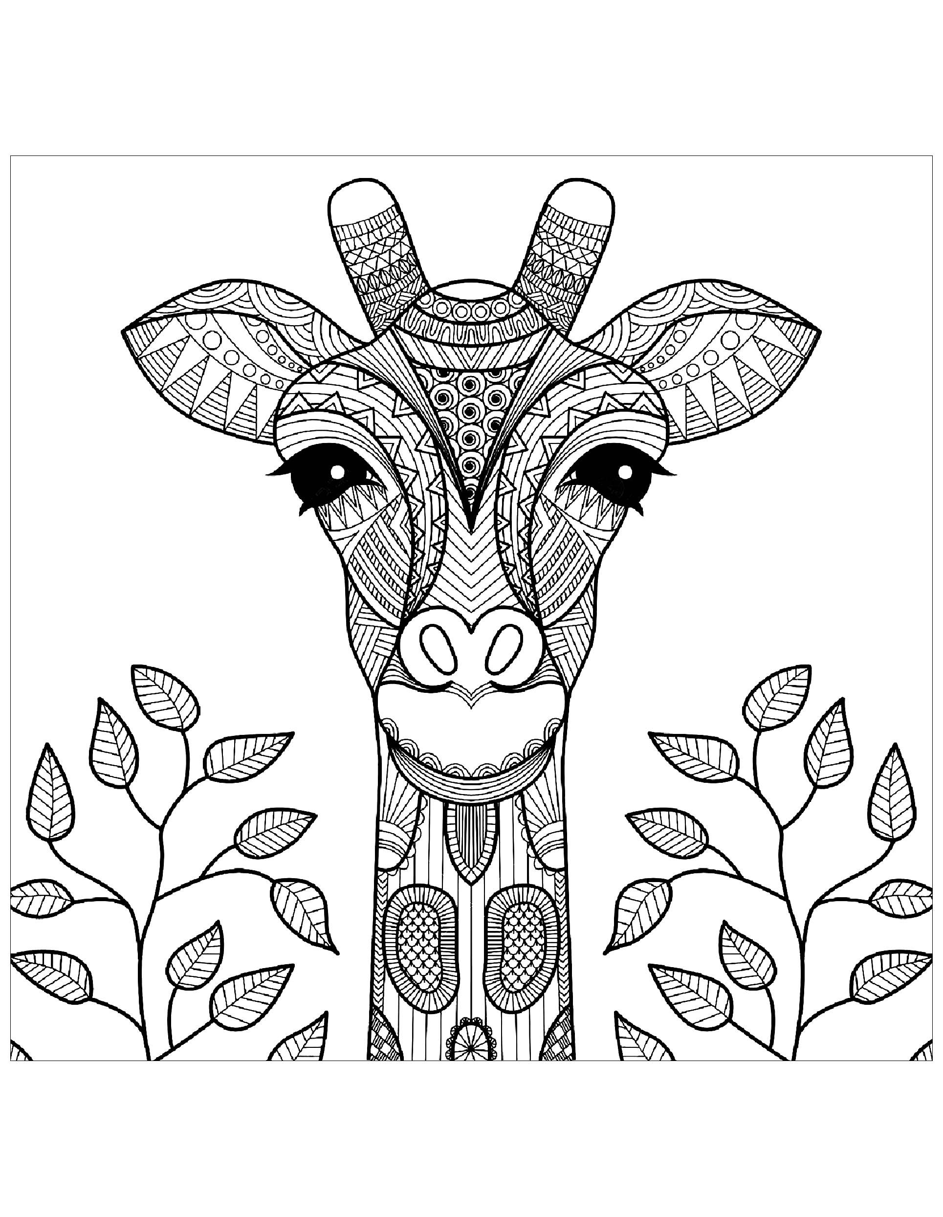 giraffes coloring pages giraffe head with leaves giraffes adult coloring pages coloring pages giraffes