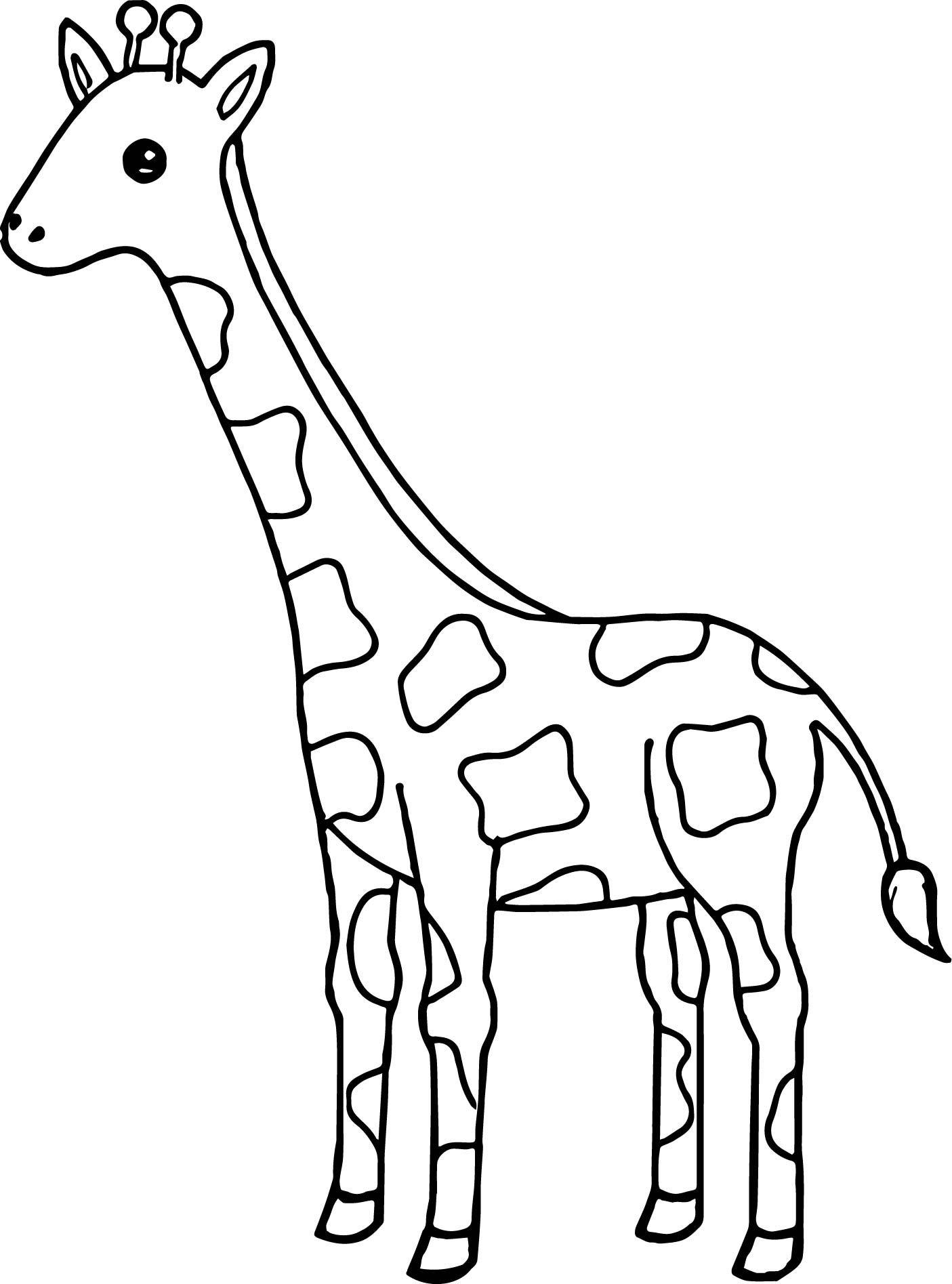 giraffes coloring pages soulmetalpodcast giraffe for coloring giraffes pages coloring