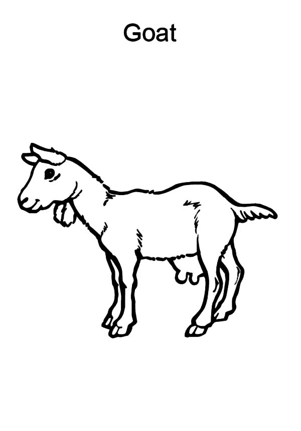 goat coloring cool collection of goat coloring pages stpetefestorg goat coloring
