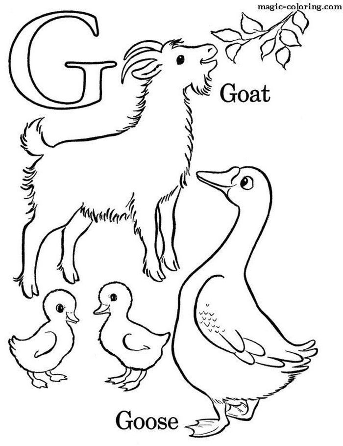 goat pictures to color billy goat coloring page coloring home goat pictures color to