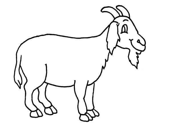goat pictures to color goat coloring pages download and print goat coloring pages goat pictures to color