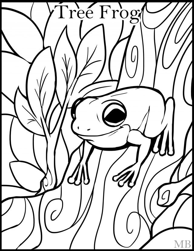 green tree frog coloring page cartoon frog drawing at getdrawings free download coloring tree green frog page