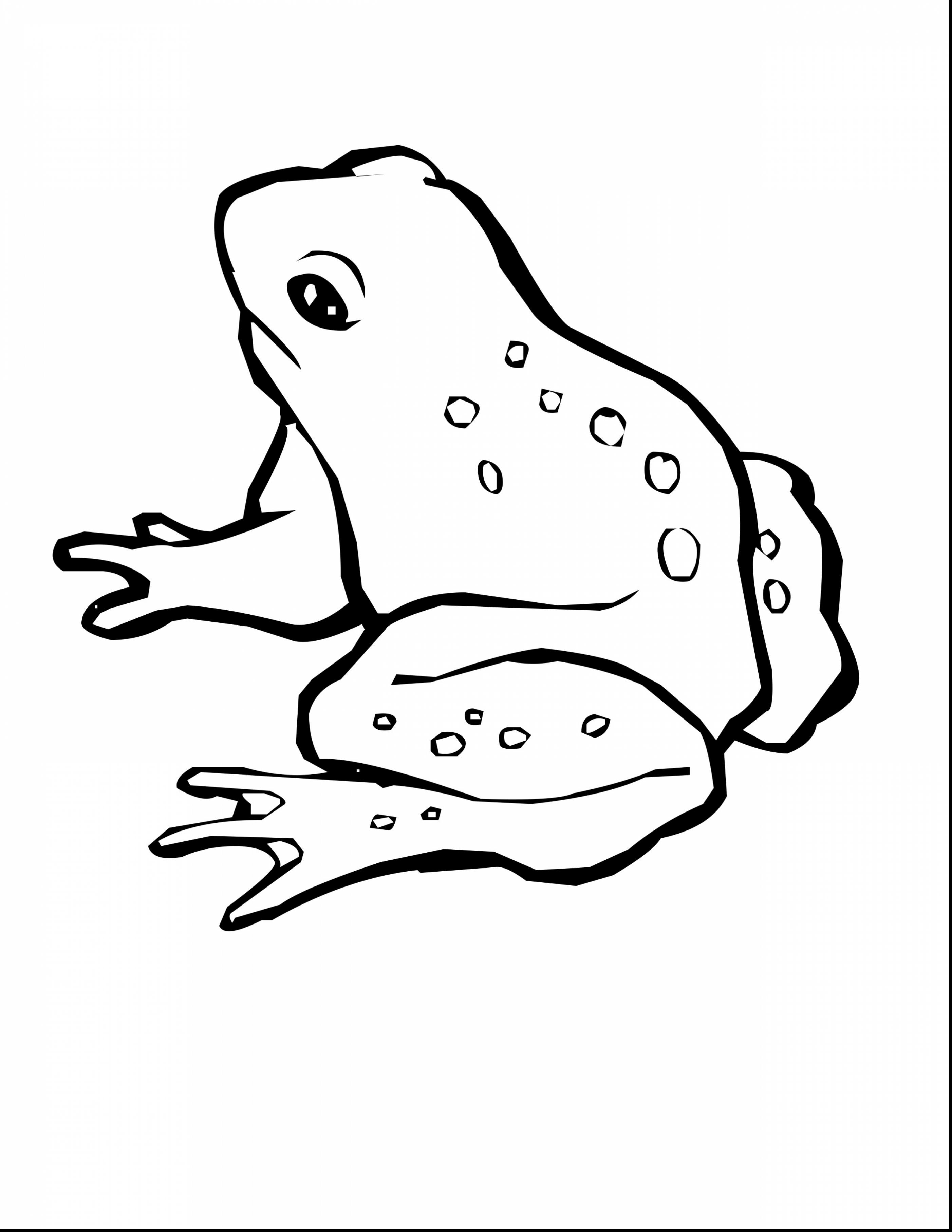 green tree frog coloring page green tree frog drawing at getdrawings free download page coloring frog tree green