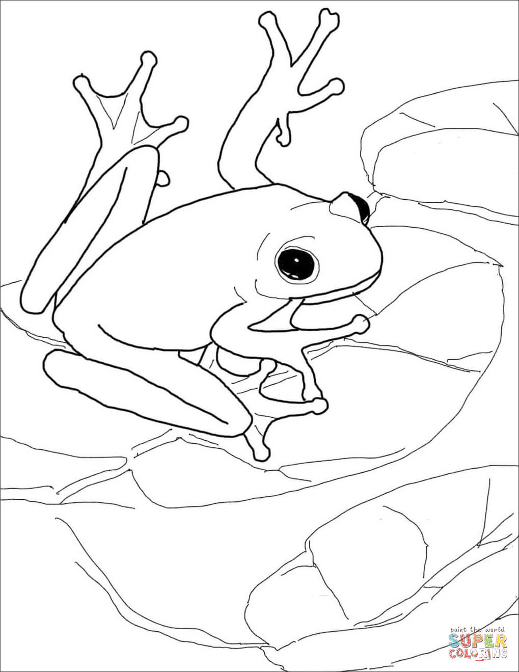 green tree frog coloring page green tree frog drawing at getdrawings free download page green coloring frog tree