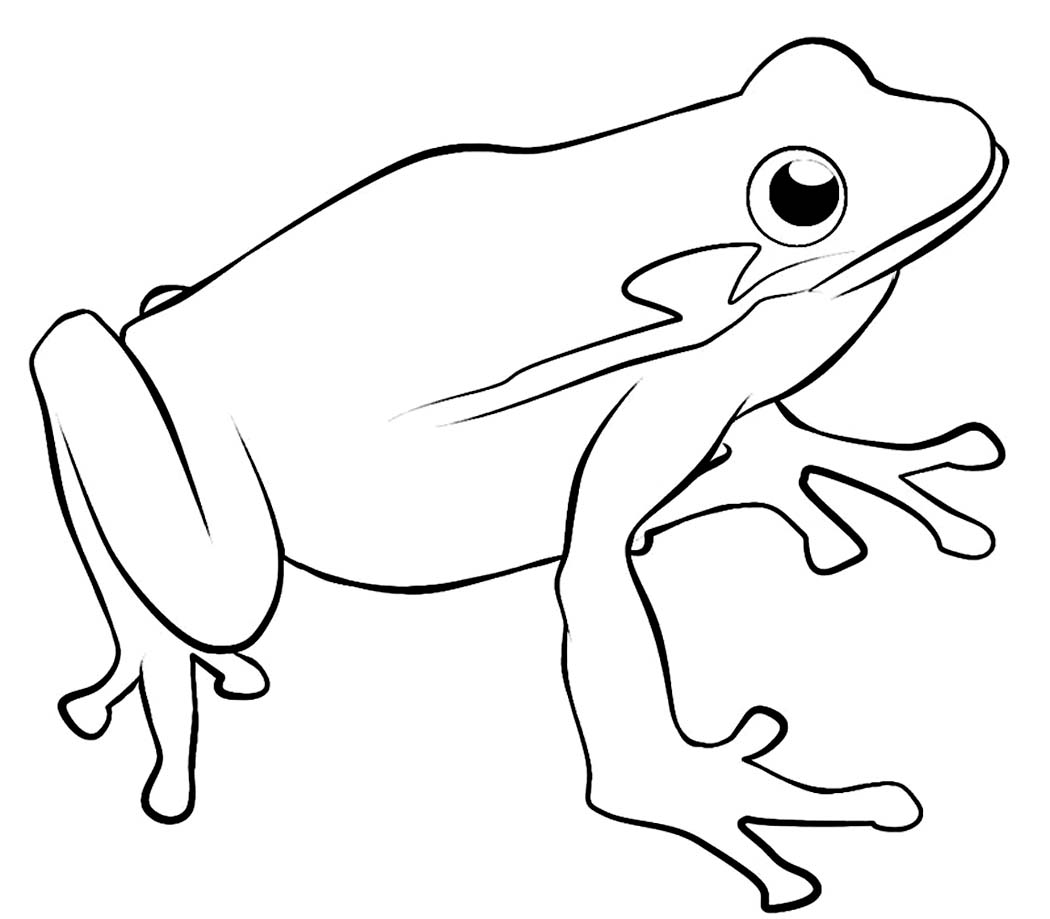 green tree frog coloring page green tree frog relaxing coloring page free frog frog tree coloring green page