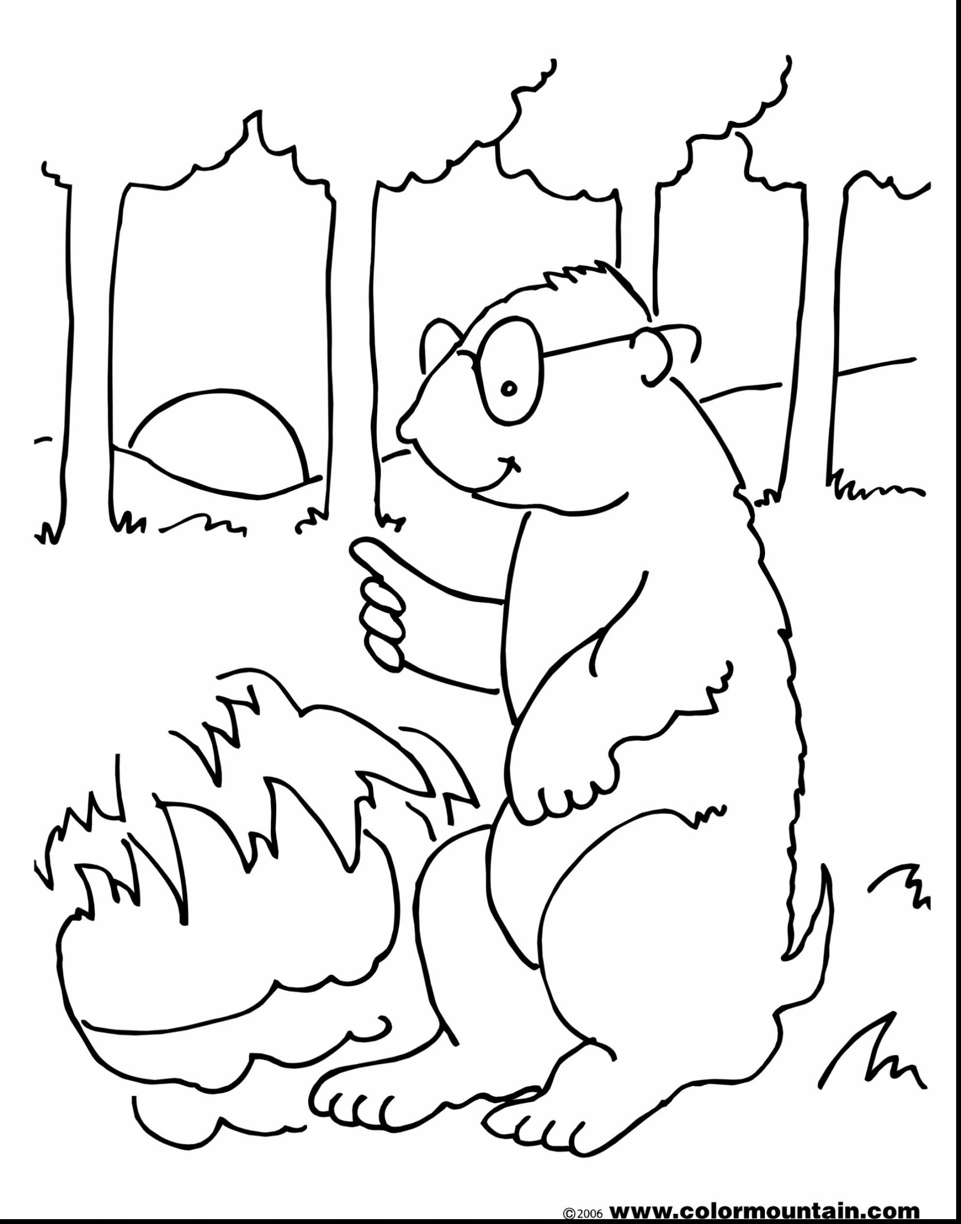 groundhog pictures to color february coloring pages best coloring pages for kids color to groundhog pictures