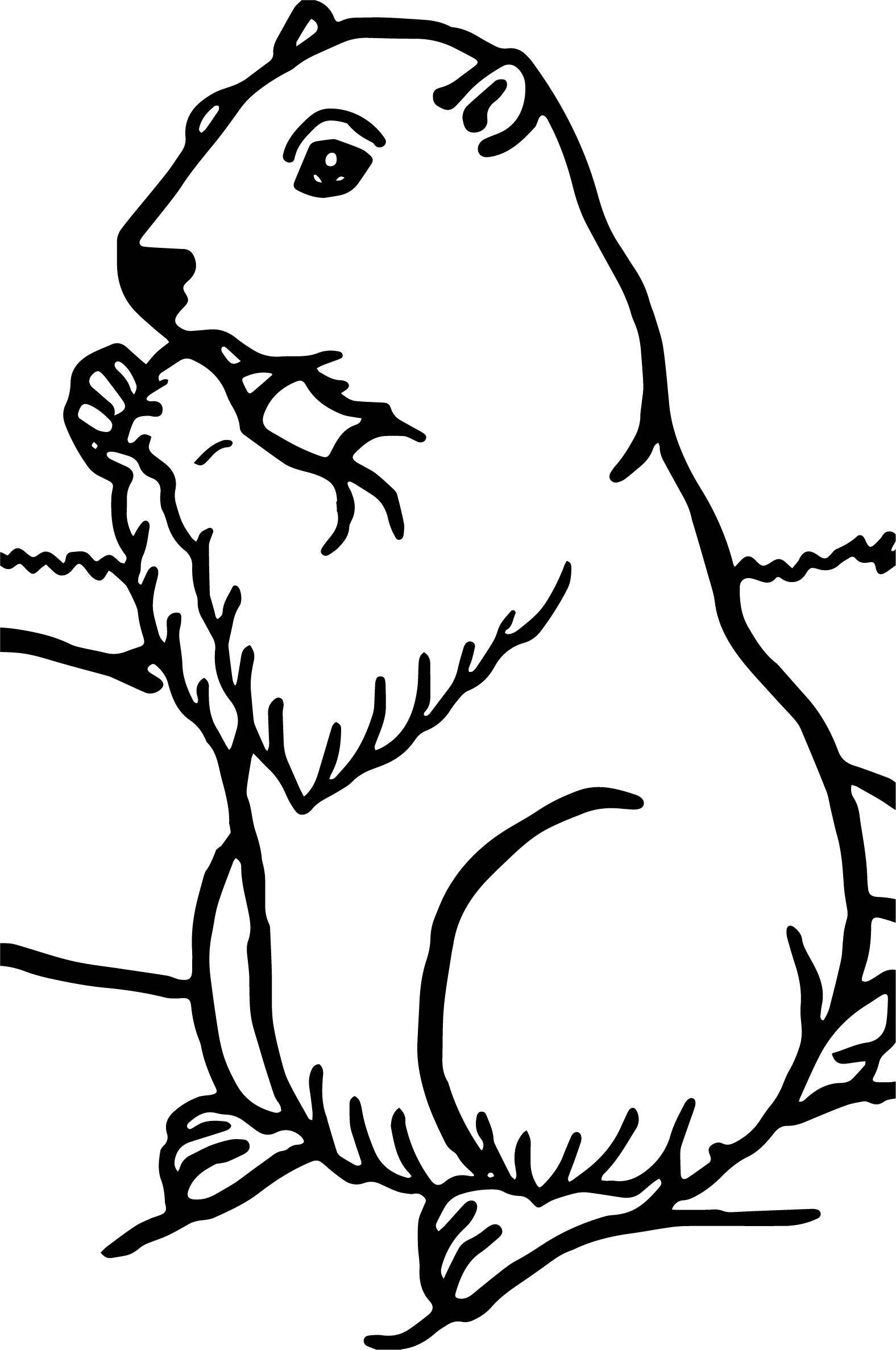 groundhog pictures to color groundhog coloring pages best coloring pages for kids to pictures groundhog color