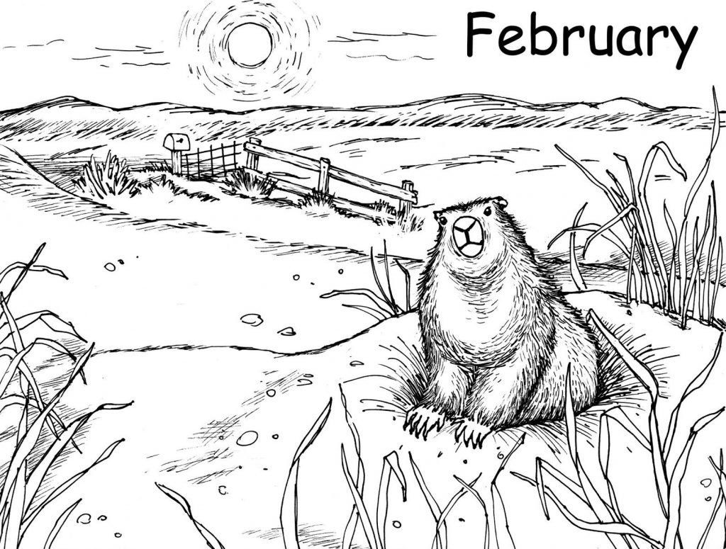 groundhog pictures to color groundhog coloring pages kidsuki color to pictures groundhog