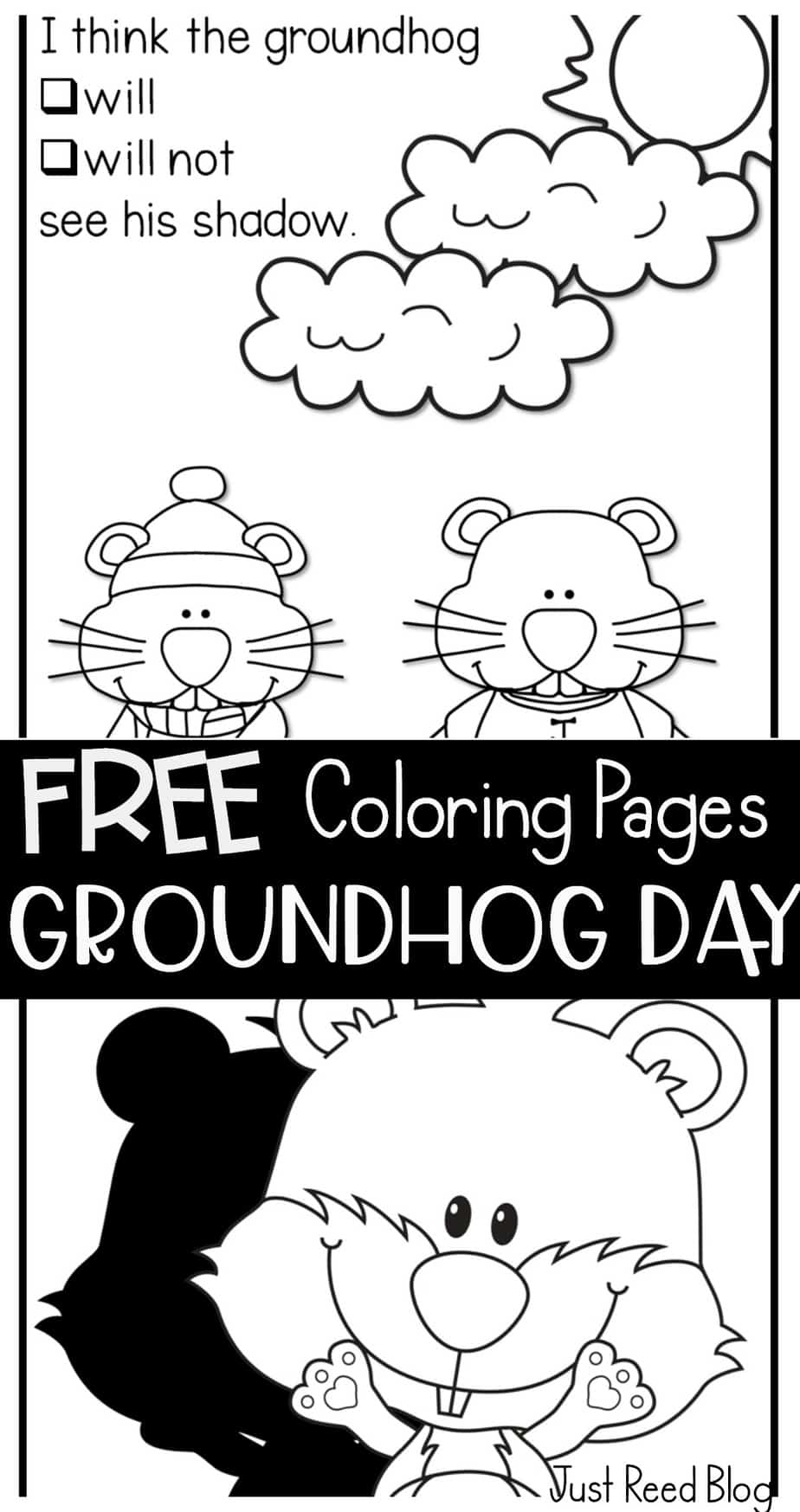 groundhog pictures to color groundhog crayolacomau pictures to color groundhog