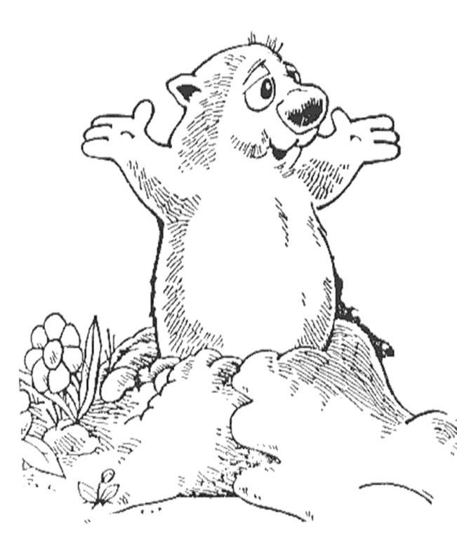 groundhog pictures to color groundhogs coloring pages learny kids groundhog to pictures color