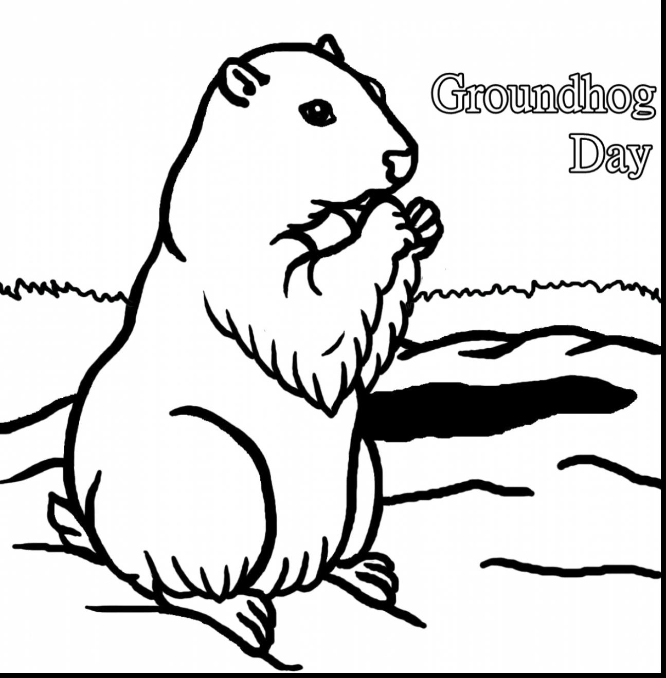 groundhog pictures to color groundhogs free coloring pages to groundhog pictures color
