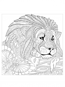 hard lion coloring pages 315 best animal coloring pages images on pinterest pages hard coloring lion