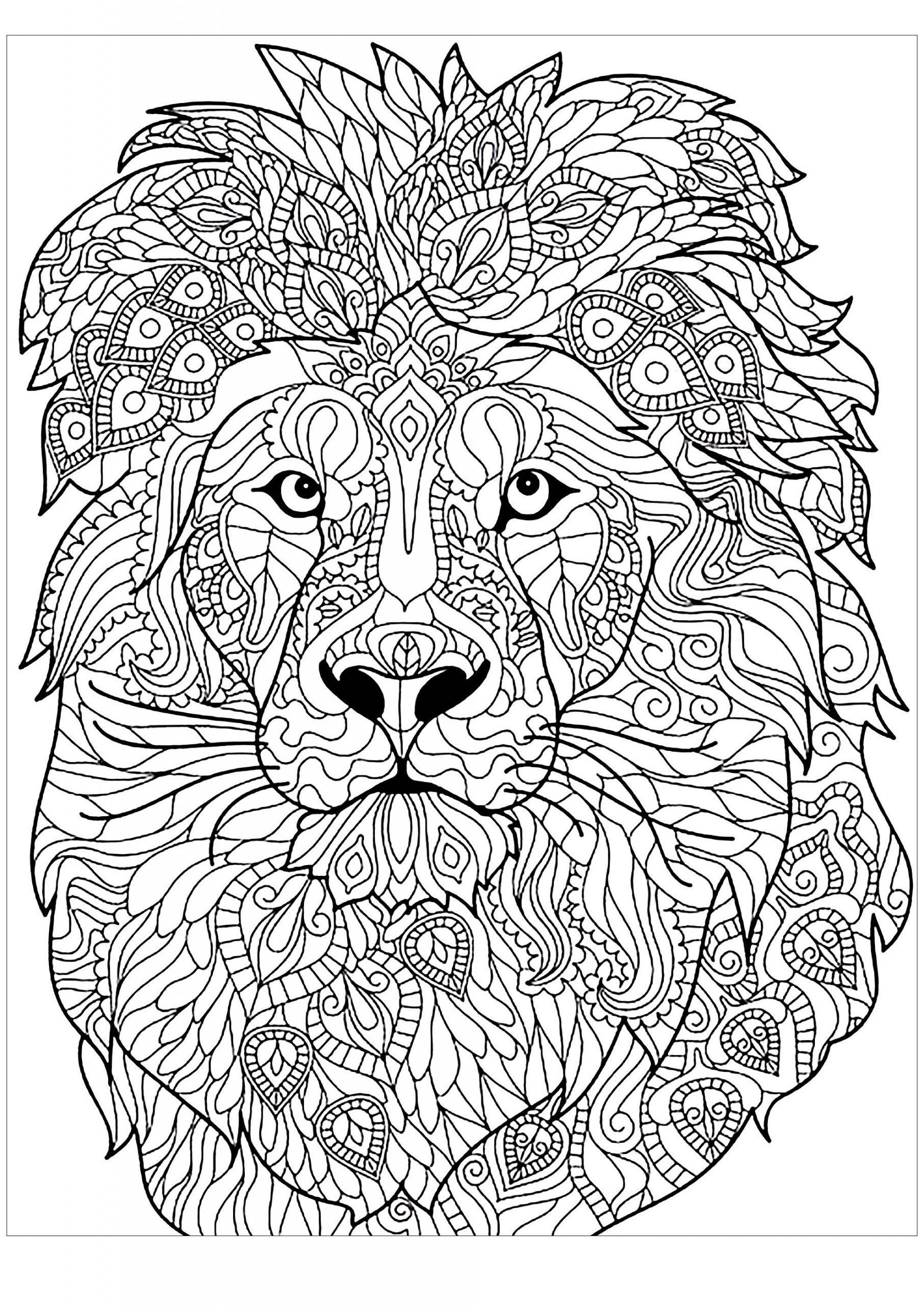 hard lion coloring pages animal coloring pages free coloring pages printable for lion coloring pages hard