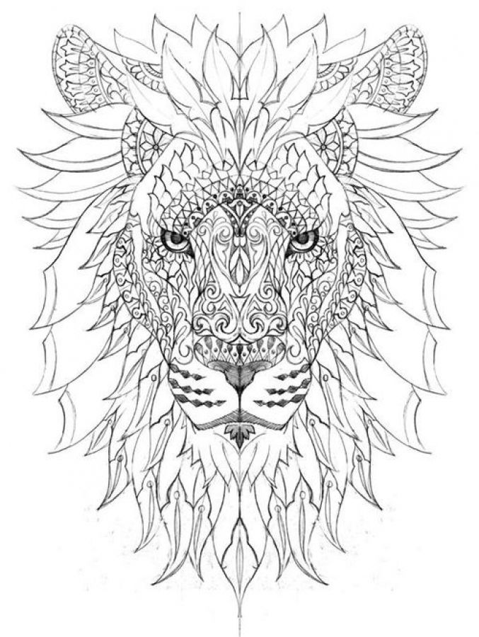 hard lion coloring pages pin on school stuff pages lion hard coloring