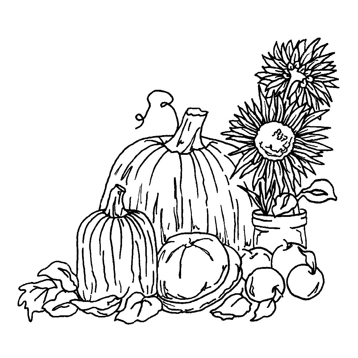 harvest colouring sheets free harvest coloring pages at getcoloringscom free harvest sheets colouring