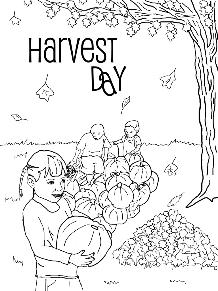 harvest colouring sheets harvest crops in autumn season coloring page color luna colouring harvest sheets