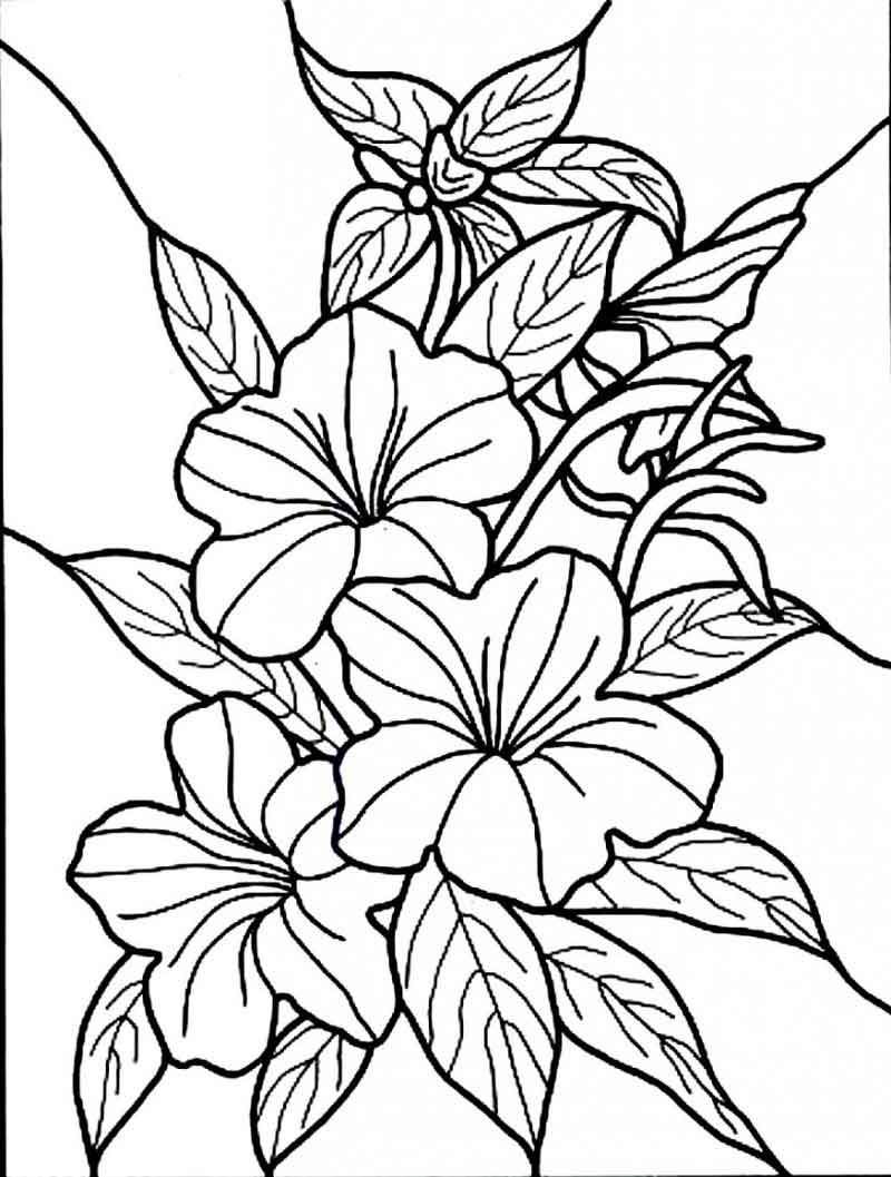 hibiscus coloring page faerlmarie coloring pages 32 hibiscus flower coloring pages page coloring hibiscus