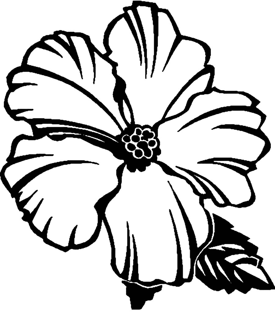 hibiscus coloring page hibiscus flower coloring pages download and print page hibiscus coloring