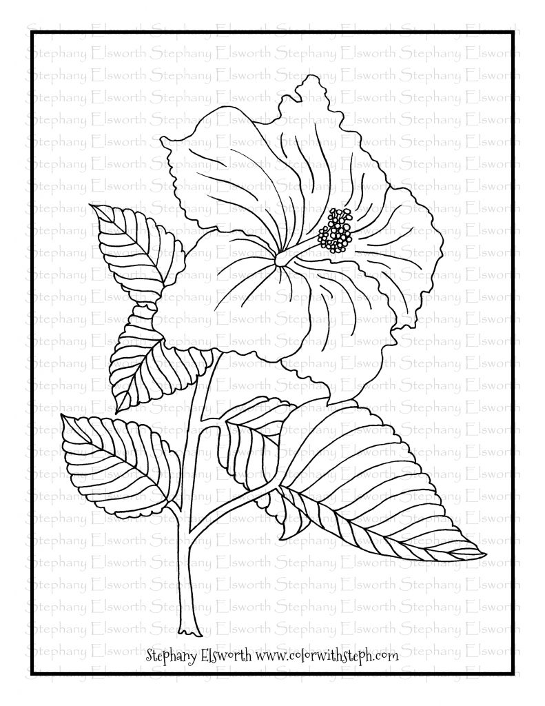 hibiscus coloring page hibiscus flower free printable coloring page color with coloring hibiscus page