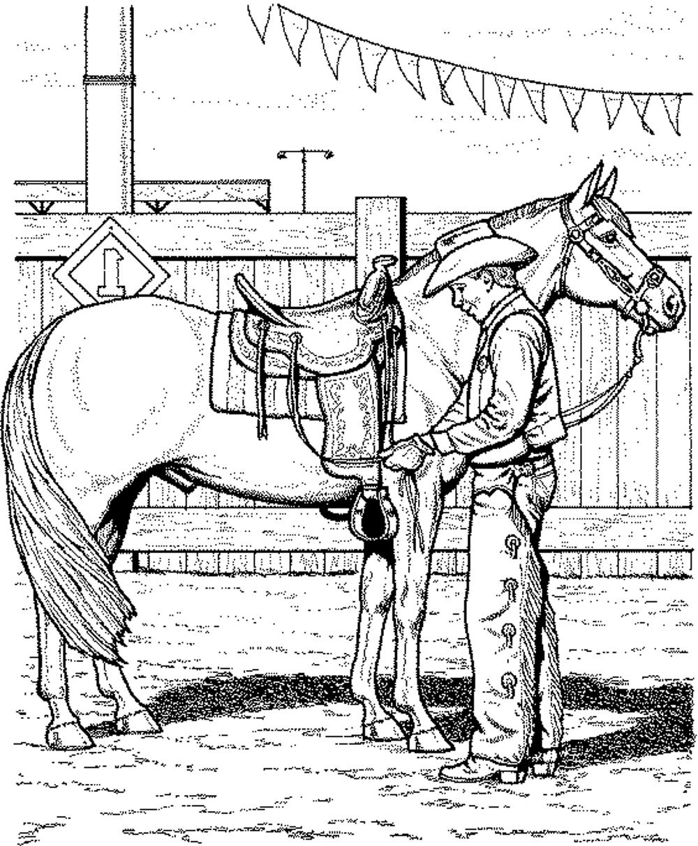 horse coloring book pages horse coloring pages team colors pages horse book coloring
