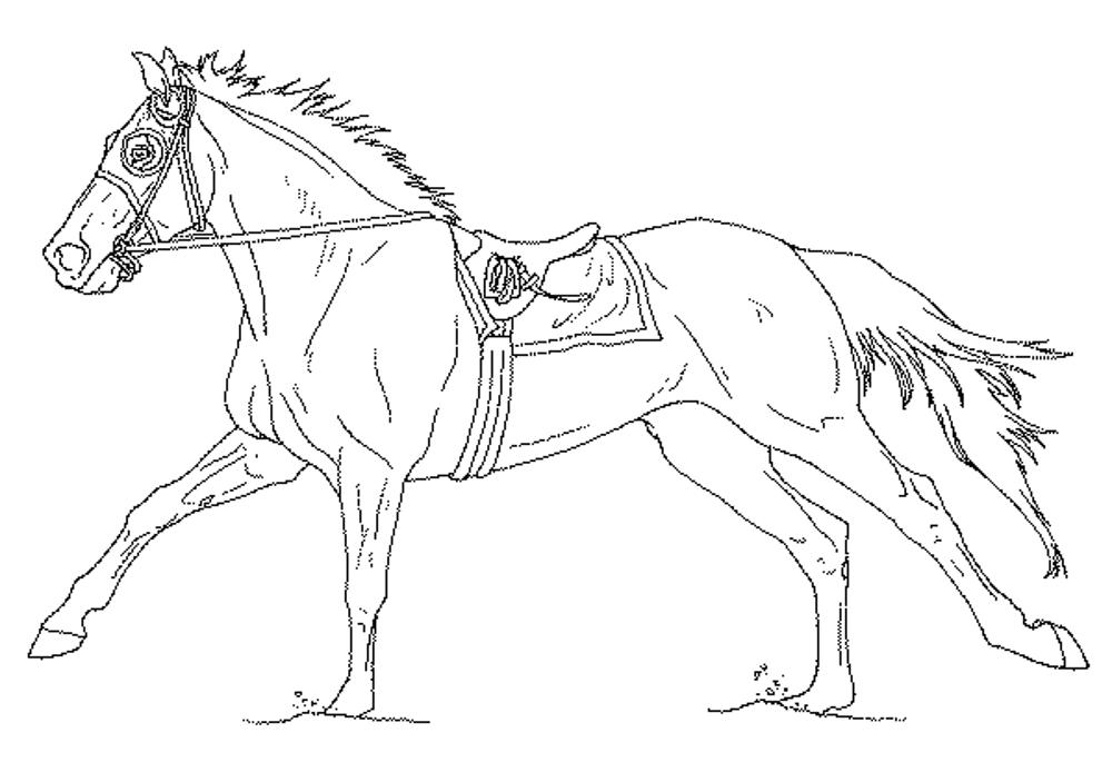 horse coloring fun horse coloring pages for your kids printable coloring horse 1 2