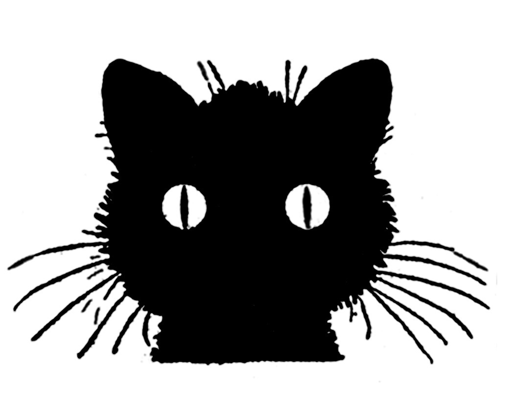 how to draw a black cat 14 black cat clipart halloween the graphics fairy to cat how draw a black