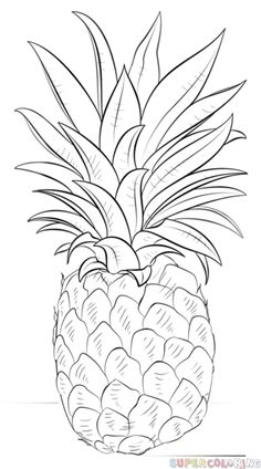 how to draw a bowl of fruit step by step pin by margo cohn on art that resonates with my heart step to bowl of step draw a how fruit by