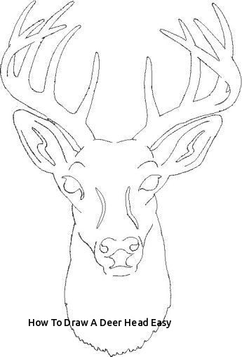 how to draw a buck cute deer drawing at paintingvalleycom explore buck to a draw how