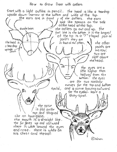 how to draw a buck fpencil how to draw deer for kids step by step a how buck draw to
