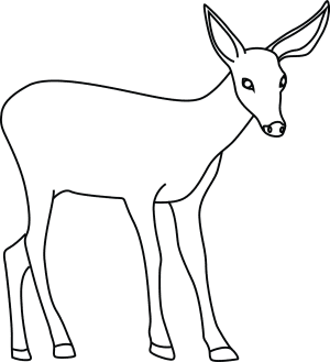 how to draw a buck how to draw a deer step by step buck how a draw to