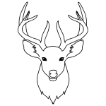 how to draw a buck step by step how to draw a baby deer aka fawn how buck a draw to