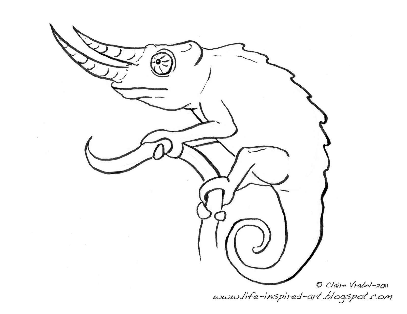 how to draw a chameleon chameleon drawing at paintingvalleycom explore draw how a to chameleon