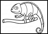 how to draw a chameleon easy chameleon pencil drawing pet39s gallery chameleon draw to a how