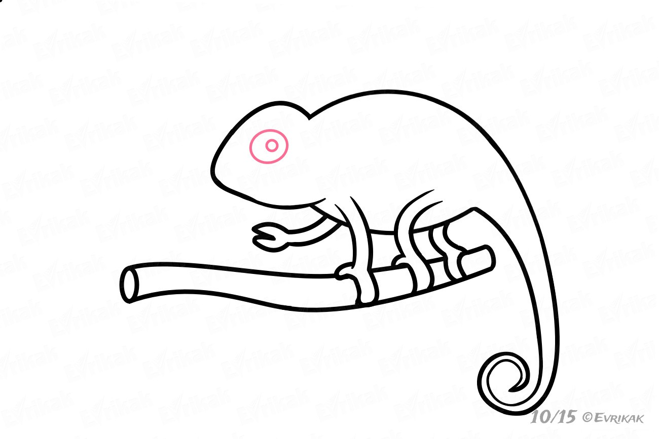 how to draw a chameleon learn how to draw the chameleon from tuff puppy tuf draw to a chameleon how