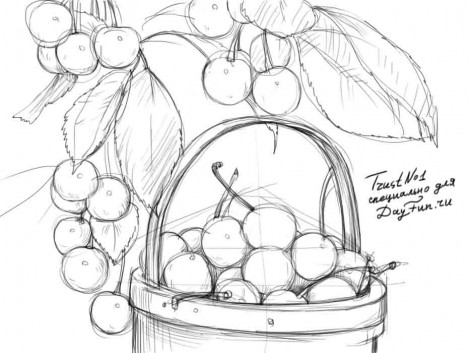 how to draw a cherry cherries drawing at getdrawings free download cherry a how to draw