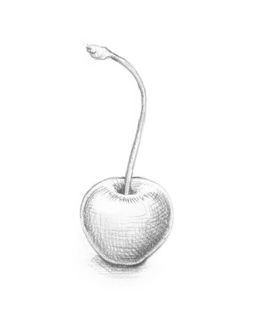 how to draw a cherry how to draw 10 different varieties of berry how cherry draw a to