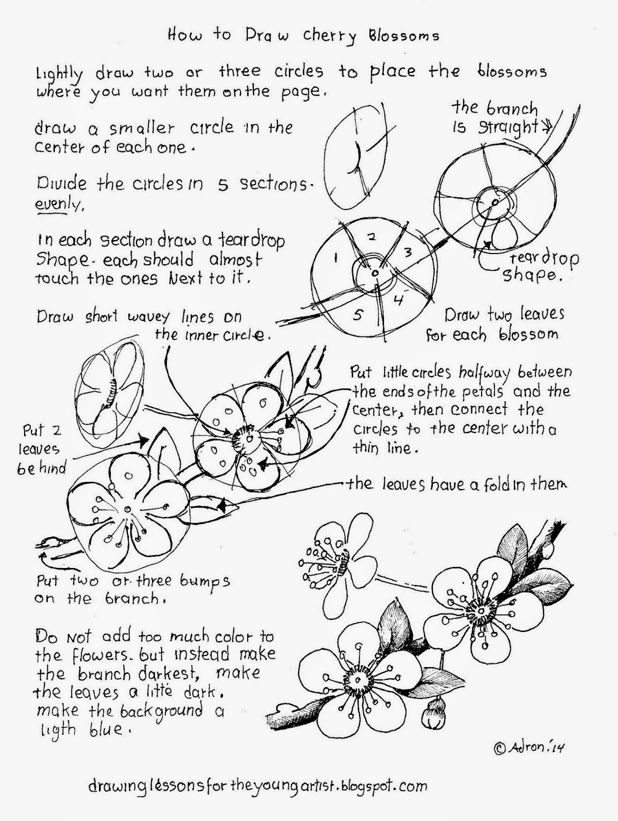 how to draw a cherry how to draw a cherry blossom 10 steps with pictures cherry draw a to how