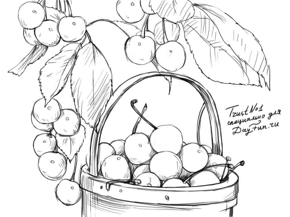 how to draw a cherry how to draw sweet cherry step by step arcmelcom how a draw to cherry