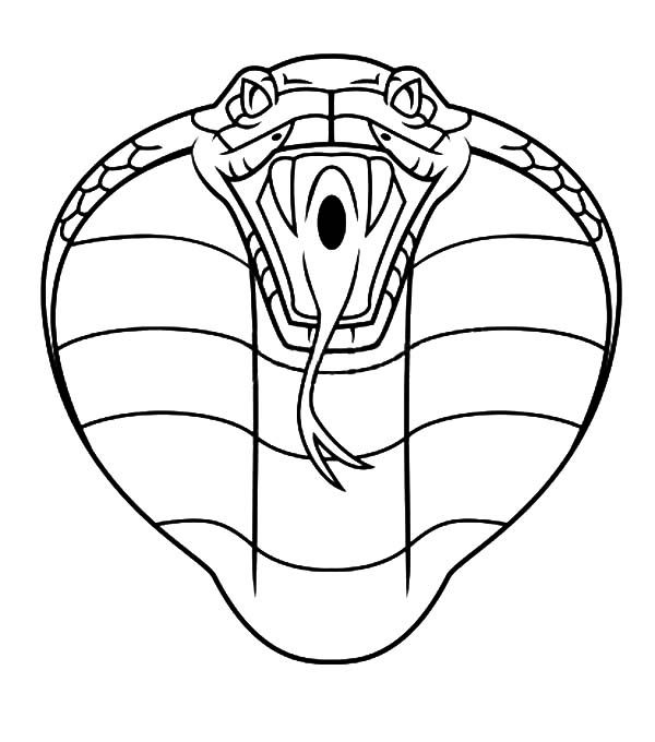 how to draw a cobra how to draw a king cobra step by step drawing tutorials a draw how cobra to