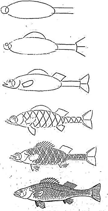 how to draw a fish how to draw a fish for kids easy fish drawing drawn to a how draw fish