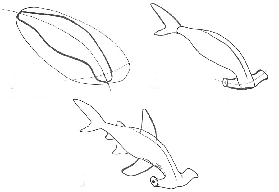 how to draw a fish how to draw a tropical fish a draw how to fish
