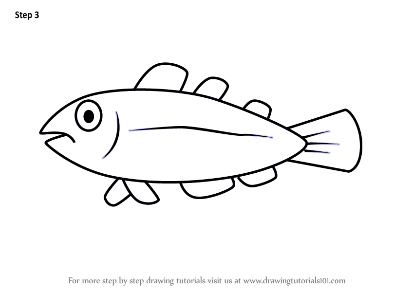 how to draw a fish how to draw puffer fish coloring page kids play color draw how a to fish