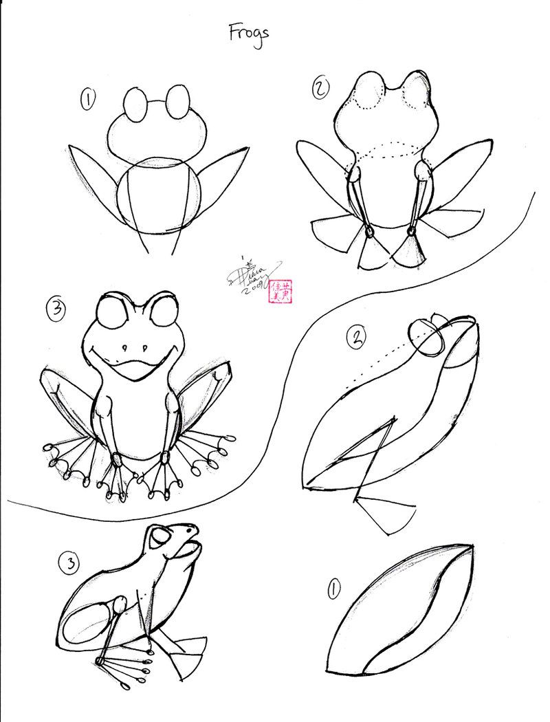 how to draw a frog how to draw a frog a frog how draw to