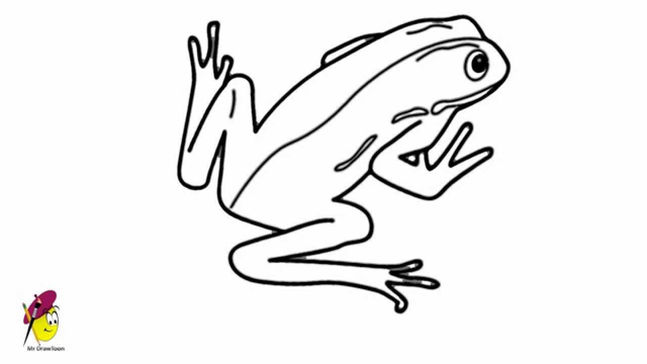 how to draw a frog how to draw animals for kids step by step with pencil do to draw a how frog